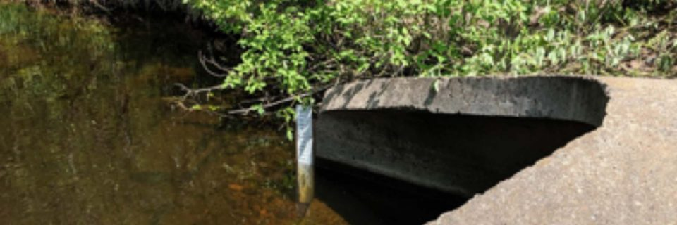 MN1018 Keene Creek at Keene Creek Park