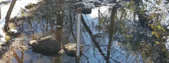 MN1021 Kingsbury Creek @ Carlson Park